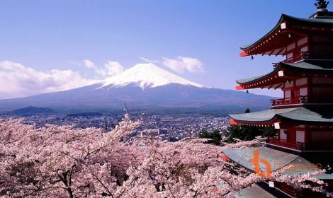 Hirosaki-Thành phố mộng mơ của các otaku