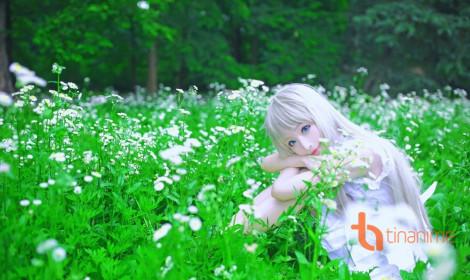 Vẻ đẹp thanh thoát của Meiko Menma (Anohana)