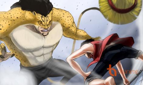 Lucci và Luffy - một trong những trận chiến hay nhất One Piece!