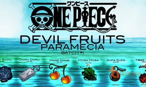 Trái Ác Quỷ hệ Paramecia trong One Piece