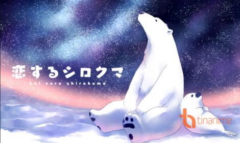 Anime Koisuru Shirokuma - Tình yêu tuyết trắng của Gấu và Cẩu