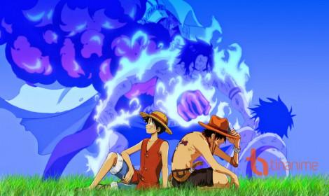 Những điều về One Piece có thể bạn chưa biết!