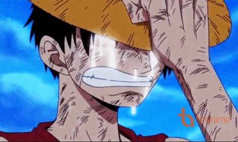 Nước mắt của Luffy!