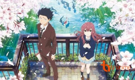A Silent Voice xuất sắc giành giải Anime của năm 2016!