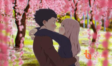 Koe no Katachi - Viết tiếp câu chuyện tình yêu (Phần 2)