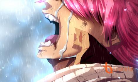 Tác giả Fairy Tail đã bắt đầu viết chương cuối manga!