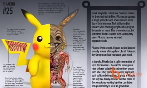 """""""Lộn ruột lộn gan"""" với thánh giải phẫu pokemon!"""