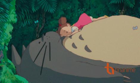 Giấc ngủ ngon cùng Totoro!