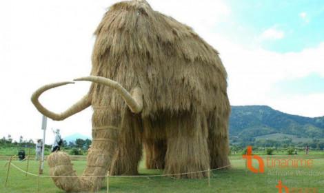 Đây là những gì còn lại sau thu hoạch lúa ở Nhật!
