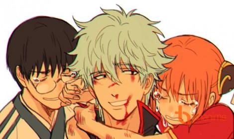 Tin buồn từ anime Gintama