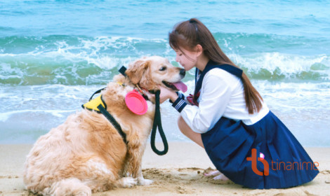 Người yêu không có nhưng chó phải có một con nhé!
