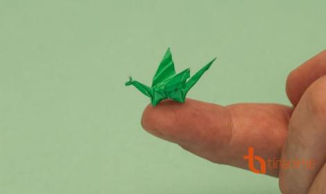 """Gặp gỡ """"thánh"""" gấp Origami tí hon"""