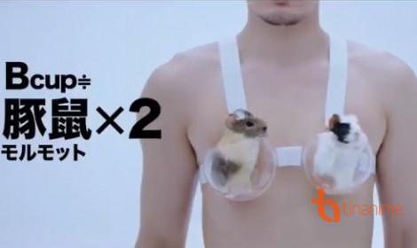 Cười đau bụng với quảng cáo áo ngực phong cách Nhật