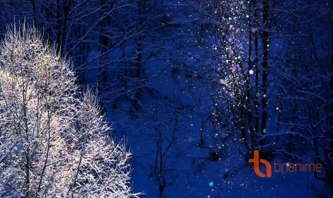 Bụi kim cương - Phép màu mùa Đông ở Hokkaido