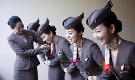 Những quy tắc ngầm trong ngành hàng không Nhật Bản