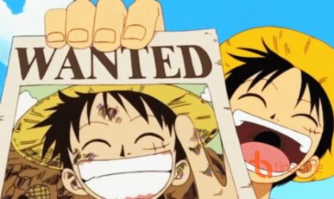 Hồ sơ truy nã - Monkey D. Luffy
