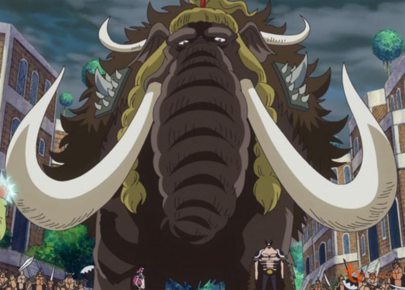 Ví dụ thứ hai cho người sử dụng trái hệ này là Jack. Nhờ năng lực Trái Ác  Quỷ hệ Zoan, Jack có thể biến thành một con voi ma mút khổng lồ.
