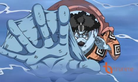 Người cá Jinbe - Hiệp sĩ biển cả!