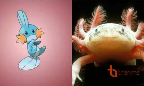 Những Pokémon được lấy cảm hứng từ đời thực