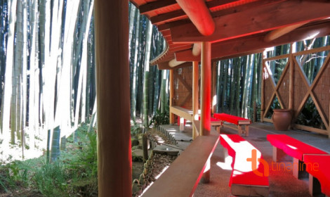 Rừng tre Hokokuji tuyệt đẹp ở Kamakura!