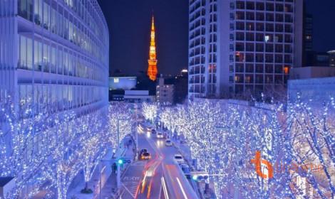 Đèn Giáng sinh lấp lánh sáng rực giữa lòng Tokyo!