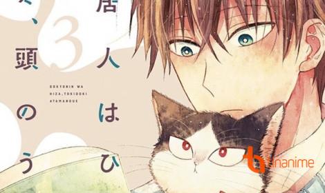 Doukyonin Wa Hiza, Tokidoki, Atama No Ue - Gấu không có nhưng mèo phải có một con!