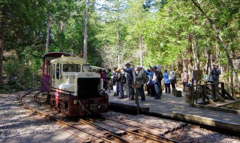 """Thám hiểm rừng Agematsu - """"Tắm rừng"""", tuyến đường sắt xuyên cả rừng rậm!"""