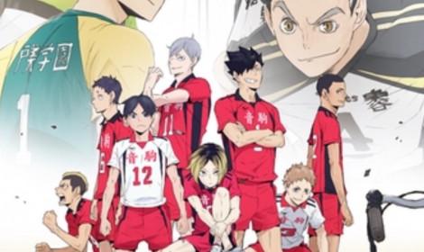 Haikyuu! OVA mới - Vòng loại bóng chuyền ở Tokyo!