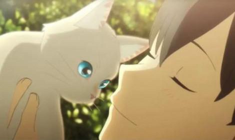 Nakitai Watashi wa Neko o Kaburu - Giả mèo cua trai và cái kết!