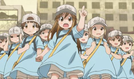 Hataraku Saibō ra mắt anime ngắn về cuộc vui của các Tiểu Cầu!